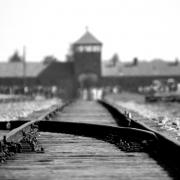 הערכת תכניות חינוכיות בבית הספר להוראת השואה ביד ושם